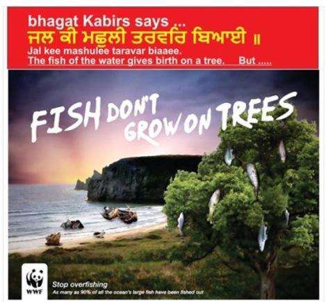 171009 Fish Tree